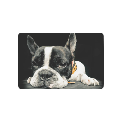 InterestPrint Close Plane of a French Bulldog Anti-slip Door Mat Home Decor, Funny Animal Indoor Outdoor Entrance Doormat Rubber Backing
