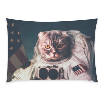InterestPrint Beautiful Cat Astronaut Vintage American Flag Star Pillowcase for Couch Bed 20 x 30 Inches - the Stars and the Stripes Pillow Cover Case Shams Decorative