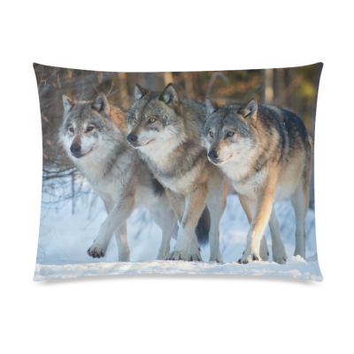 InterestPrint Animal Wild Wolf Home Decor, Winter Snow Pillowcase 20 x 26 Inches One Side - Wolf on Iceberg Pillow Cover Case Shams Decorative