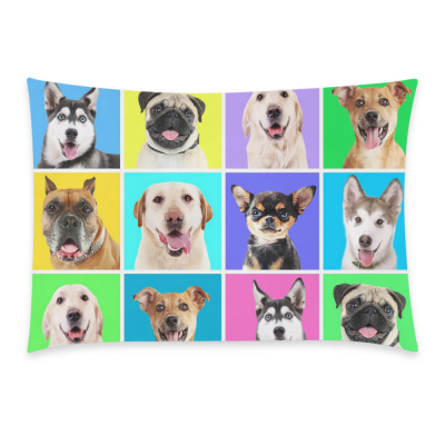 InterestPrint Home Decor Cute Dog Pug Pillowcase 20 x 30 Inches ( One Side ) - Animal Dogs on Colorful Backgrounds Pillow Cover Case Shams Decorative