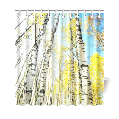 InterestPrint Birch Forest Sunlight Custom Shower Curtain Polyester Fabric Bathroom Sets Home Decor