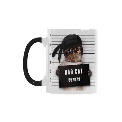 InterestPrint Bad Cat in Mugshot I Love My Cat Cat Lover Morphing Mug Heat Sensitive Color Changing Coffee Mug Cup, Funny Birthday Christmas Gifts for Men Women Him Her Mom Dad