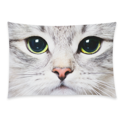 InterestPrint Home Bathroom Decor Funny Animal Cat Pillowcases Decorative Pillow Cover Case Shams Standard Size for Couch Bed-White Grey-20x30 Inch-Polyester Cotton-Lovely Animal Cute Cat Kitten Eye